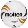 Futbalová lopta VG 804
